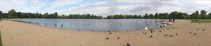 Панорамный взгляд пруда Стоковая Фотография RF