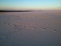 Панорамный взгляд пустыни Стоковая Фотография RF