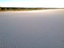 Панорамный взгляд пустыни Стоковое фото RF