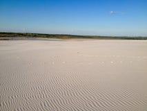 Панорамный взгляд пустыни Стоковая Фотография