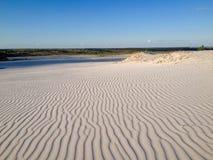 Панорамный взгляд пустыни Стоковое Изображение