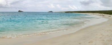 Панорамный взгляд пляжа с белым песком залива Gardner стоковое фото rf