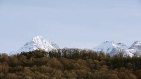 Панорамный взгляд снежных пиков Лес на ноге горы Природа голубое небо видеоматериал