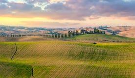 Панорамный взгляд типичного ландшафта сельской местности Тосканы Стоковые Фотографии RF