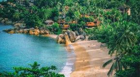 Панорамный взгляд тропического пляжа с пальмами кокоса Стоковое фото RF