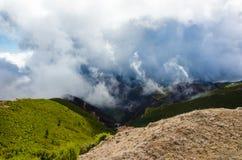 Панорамный взгляд холмов с, который сгорели лесом октябрем 2016 Мадейрой Стоковые Фото