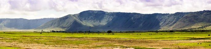 Панорамный взгляд Ngorongoro стоковое фото rf