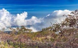 Панорамный вид от высоты над облаками Панорама голубого неба с облаками и кустовидными холмами стоковые фото