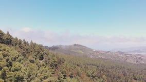 Панорамный вид от трутня - Тенерифе: лес, долина и океан акции видеоматериалы