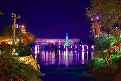 Панорамный вид рождественской елки, озера и лесных деревьев в международной зоне привода стоковые изображения rf