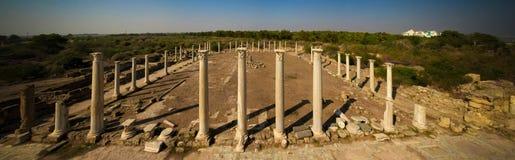 Панорамный вид с воздуха к спортзалу на руинах салями, Кипру стоковые изображения rf