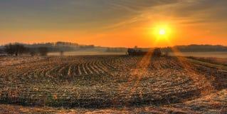 Панорамный восход солнца в полях стоковые изображения rf