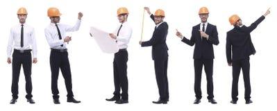 Панорамный коллаж фото квалифицированного архитектора изолированного на белизне стоковое фото