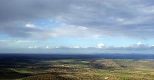 Панорамный дубов holm с облачным небом Стоковое Изображение RF