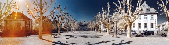 Панорамный ультракрасный взгляд места города с красивыми деревьями Стоковые Фотографии RF