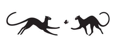 Пантеры на белой предпосылке бесплатная иллюстрация