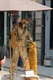 Пантомима золота Elvis Стоковые Фото