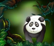 Панда в дождевом лесе бесплатная иллюстрация