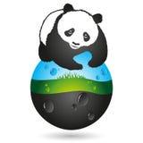 Панда и символ земли Стоковое Изображение RF