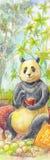 Панда, картина акварели Животное e японского стиля иллюстрации Стоковое Изображение