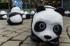 Панды в Киле Стоковые Изображения