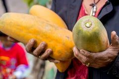 Папапайя удерживания женщины, сладкая зрелая свежая папапайя, сырцовая еда vegan стоковое фото