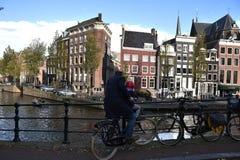 Папа и сын в Амстердаме Стоковые Изображения