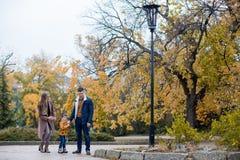 Папа мамы и мальчик идут в парк Стоковое Фото
