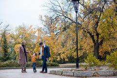 Папа мамы и мальчик идут в парк Стоковые Изображения