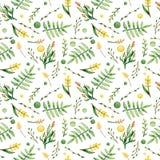 Папоротники акварели и картина цветков желтого цвета безшовная иллюстрация штока