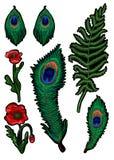 Папоротник, павлин пера и цветки мака вышили стикерам Вектор вышивки Стоковое фото RF