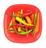 Паприка перцев Chili в красной тарелке Стоковое Изображение