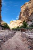 Парадная лестница Escalante мытья каньона Hackberry стоковое изображение rf