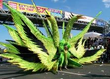 парад caribana Стоковое Изображение RF