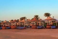 Парасоли и sunbeds на Красном Море Стоковая Фотография RF
