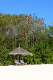 Парасоль на пляже Мальдивов Стоковые Изображения RF