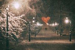 Пара в влюбленности на романтичной дате идет через снежный переулок парка зимы ночи при красивые фонарики покрытые с стоковое фото
