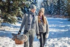 Пара в влюбленности идет в лес зимы стоковые фотографии rf