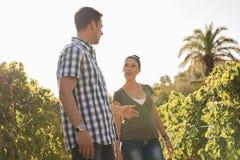 Пара говоря друг к другу в винограднике Стоковая Фотография RF