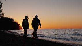 Пара гуляет вдоль пляжа на заходе солнца с их любимой собакой видео замедленного движения сток-видео