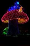 Парад Дисней электрический Стоковое Изображение RF