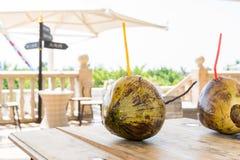 Пара зеленых кокосов с соломой Стоковое Изображение RF