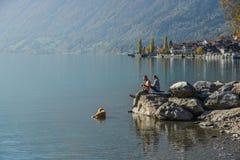 Пара играя с собакой на озере Brienz стоковое изображение rf