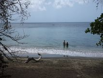 Пара наслаждаясь красивым пляжем в Вест-Инди сток-видео