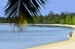 Пара на медовом месяце идет на лагуну Aitutaki стоковые фото