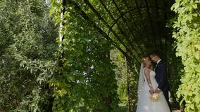 Пара свадьбы съемки крупного плана HD стоит в зеленой дуге и смотрящ в ` s одина другого наблюдает сток-видео