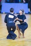 Пара танца выполняет программа взрослое латинское †«американская Стоковая Фотография