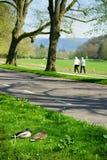 Пара утки и человеческая пара в парке Стоковые Фото