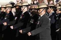 Парад день памяти погибших в первую и вторую мировые войны, 2012 Стоковое Изображение