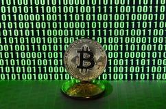 Пара bitcoins лежит на поверхности картона на предпосылке монитора показывая бинарный код ярких ых-зелен нулей и дальше Стоковое Изображение
